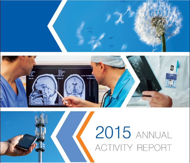 Annual Activity Report of the year 2015